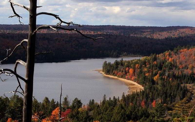 foto Algonquin Provincial Park